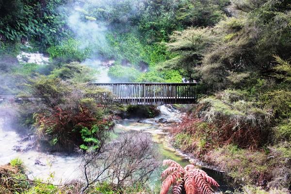 Bland Hobbitar Och Levande Natur Pa Nya Zeeland